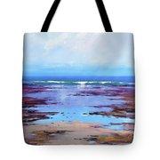 Rocky Shoreline  Tote Bag