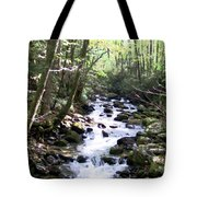 Rocky Stream 6 Tote Bag