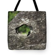 Rocky View Point Tote Bag by Debbie Cundy