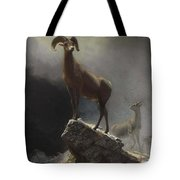 Rocky_mountain_sheep_or_big_horn,_ovis,_montana Tote Bag