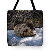 Roll In The Snow Tote Bag
