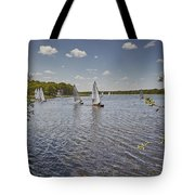 Rollesby Broad Tote Bag