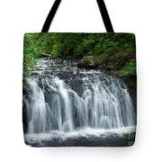 Rolley Lake Falls Dry Brushed Tote Bag