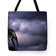 Rolling In . . .  Tote Bag