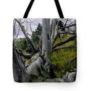 Rolling Log 2 Tote Bag