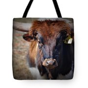 Rolly Polly Tote Bag