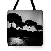 Roman Morning Tote Bag