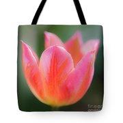 Romantic Tulip Tote Bag