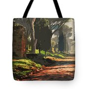Rome, Appian Way - 05 Tote Bag