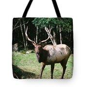 Roosevelt Elk Tote Bag