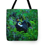 Rooster Grouse Posing Tote Bag