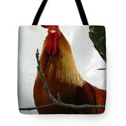 Rooster In Miami Backyard Tote Bag