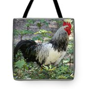 Rooster In The Coop Tote Bag