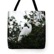 Roosting Egret Tote Bag