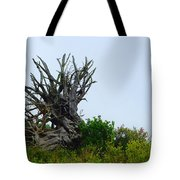 Root Of The Matter Tote Bag