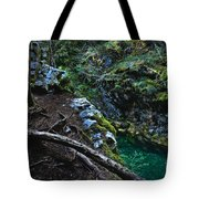 Rooted In Emerald  Tote Bag