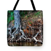 Rooting Section Tote Bag