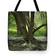Roots Above Tote Bag