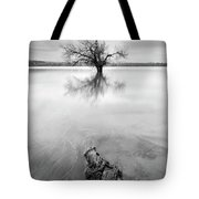 Roots And Trees Tote Bag
