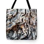 Roots Of Ostia Antica Tote Bag