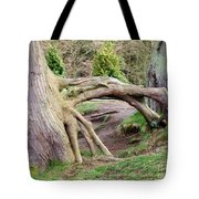 Roots Of Strength Tote Bag