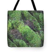 Roots Of The Ages Tote Bag by Tim Allen