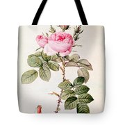 Rosa Bifera Officinalis Tote Bag by Pierre Joseph Redoute