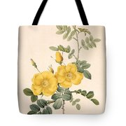 Rosa Eglanteria Tote Bag by Pierre Joseph Redoute