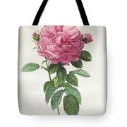 Rosa Gallica Flore Giganteo Tote Bag