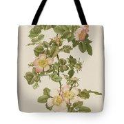 Rosa Hibernica Tote Bag