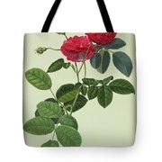 Rosa Holoferica Multiplex Tote Bag