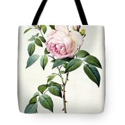 Rosa Indica Fragrans Tote Bag by Pierre Joseph Redoute