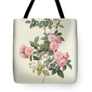 Rosa Multiflora Carnea Tote Bag