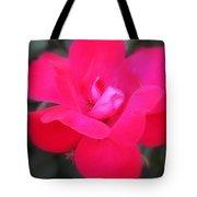 Rosa Roja Tote Bag
