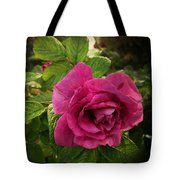 Rosa Rugosa Art Photo Tote Bag