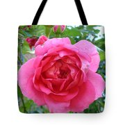 Rosa Zephrine  Tote Bag