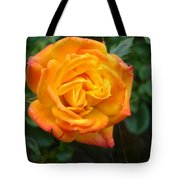 Rose - Irish Eyes Tote Bag