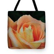 Rose 37 Tote Bag
