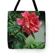 Rose 7898 Tote Bag