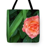 Rose And Day Lily Lives Tote Bag