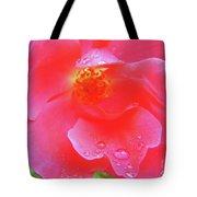 Rose And Raindrops Tote Bag