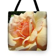 Rose Art Peach Orange Roses Sunlit Florals Giclee Baslee Troutman Tote Bag