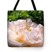 Rose Art Prints Canvas Sunlit Pink Rose Garden Baslee Troutman Tote Bag