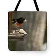 Rose Breasted Grosbeak Feeding Tote Bag