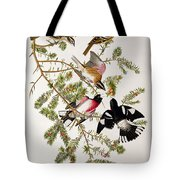 Rose Breasted Grosbeak Tote Bag by John James Audubon