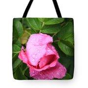 Rose Bud And Bee Tote Bag