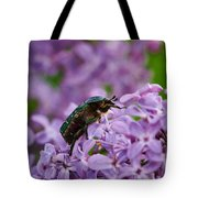 Rose Chafer On Lilac Tote Bag