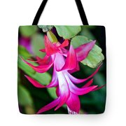 Rose-colored Christmas Cactus At Pilgrim Place In Claremont-california  Tote Bag