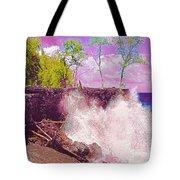 Rose Colored Splash At Mackenzie Tote Bag