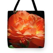 Rose Flower Art Prints Oragne Roses Summer Botanical Baslee Troutman Tote Bag